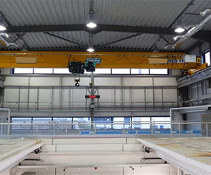 Single Girden Overhead Cranes